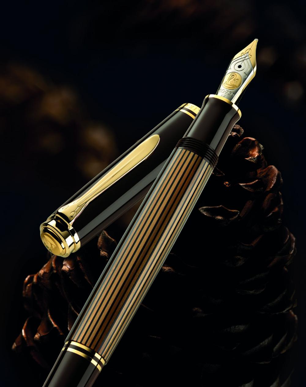 Pin By Habakuka Humorum On Pen Fountain Pen Pen Fountain Pen Ink