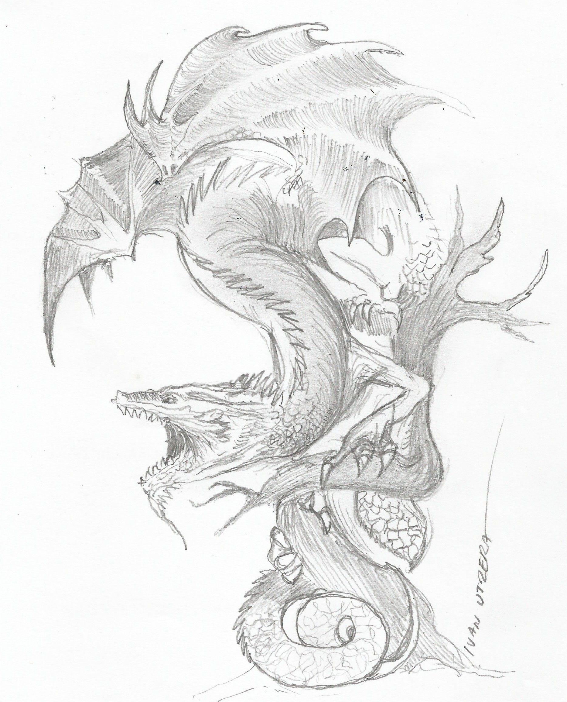 Dragon A Lapiz Dragones Lapiz Drawing