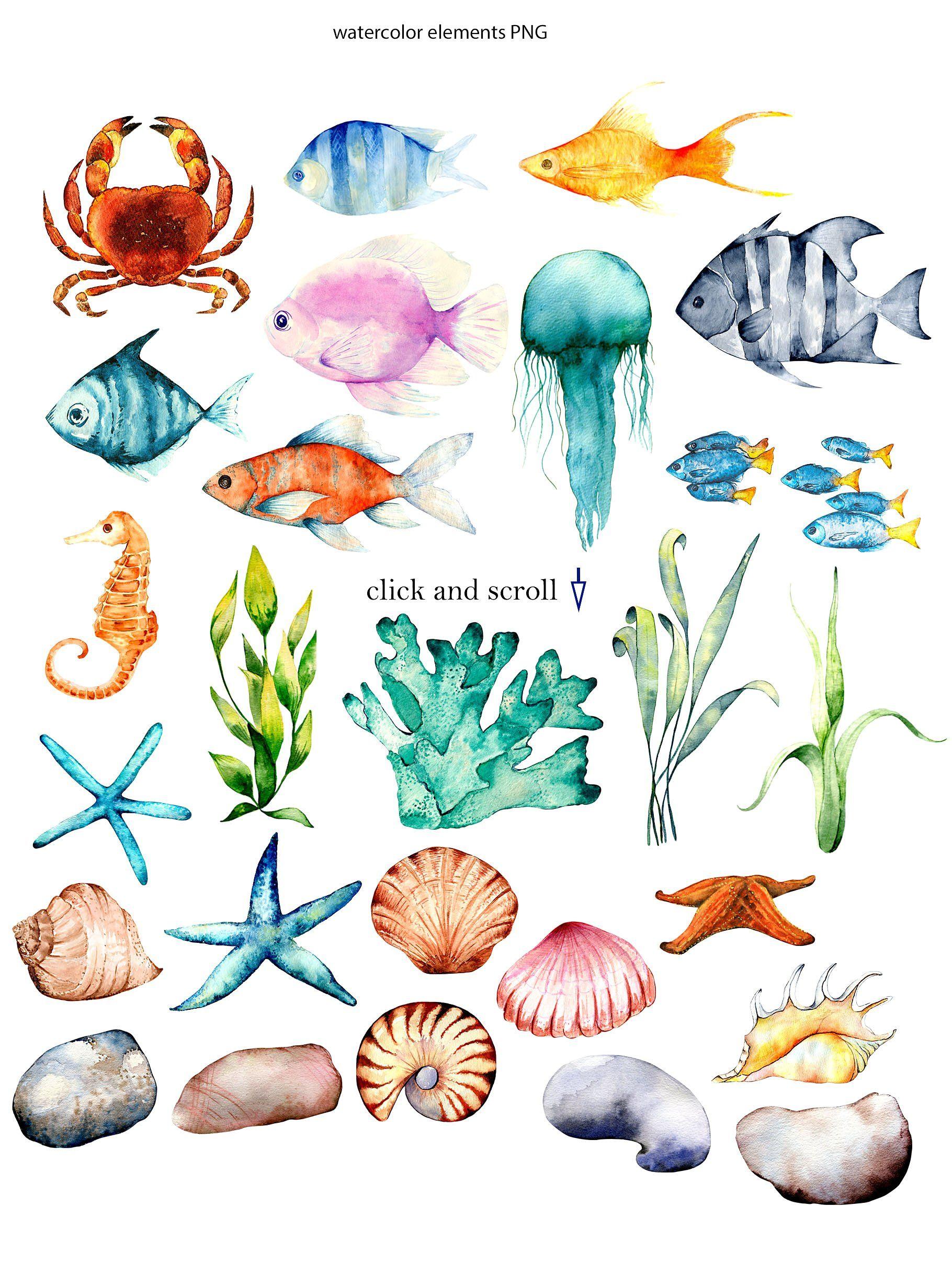 Sea Breeze Watercolor Set Coral Watercolor Watercolor Fish Sea Art
