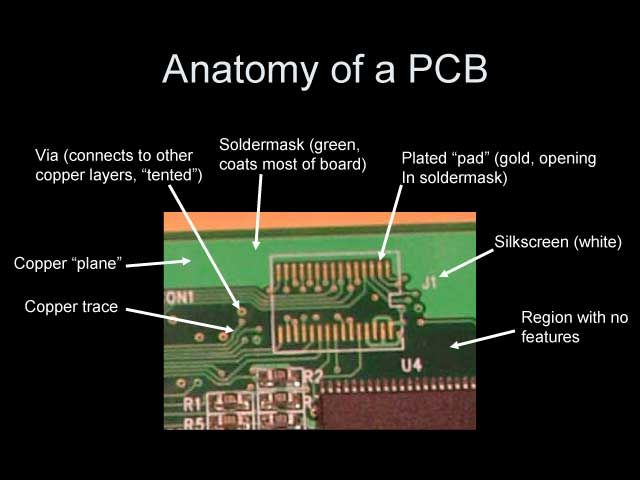 Anatomy Of Pcb Anatomy Knowledge Technology