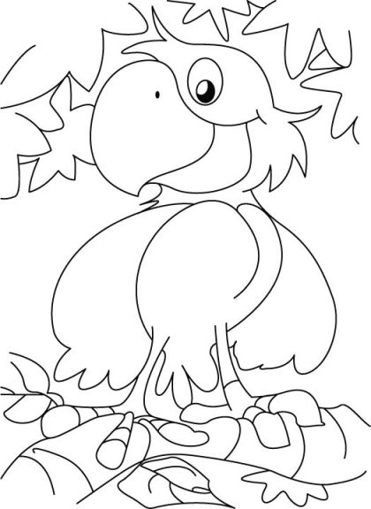 A Cute Happy Parrot Coloring Page Download Free A Cute Happy Parrot Coloring Page For Kids Best Co Animal Coloring Pages Coloring Pages Coloring Book Pages
