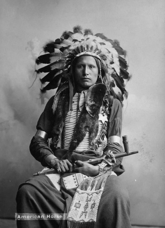 American Horse (younger), an Oglala Sioux man. 1908. Photo by L.W ...
