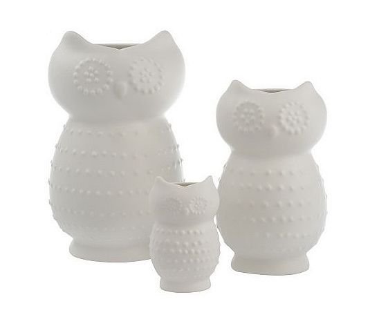 White Owl Set From Qvc