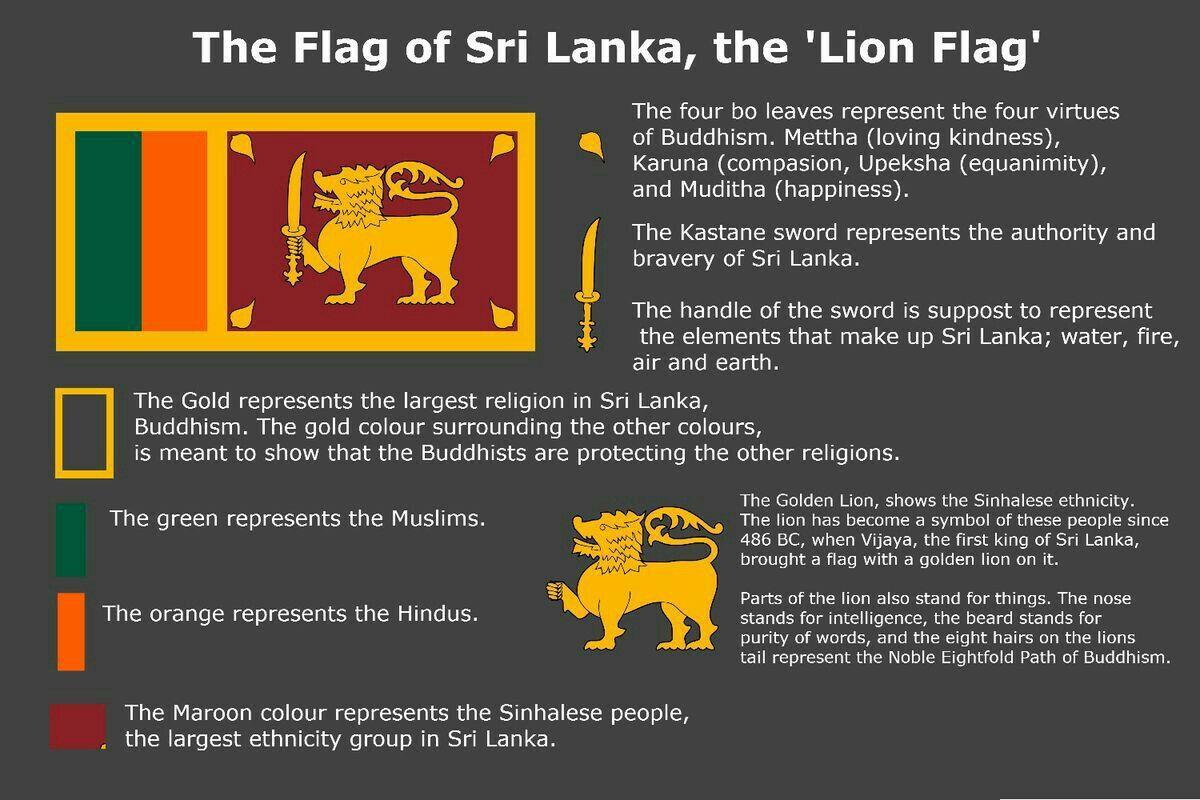 The Meaning Of Sri Lanka Flag Vexillology Srilanka Country Flag Asia Cografya Kultur Tarih