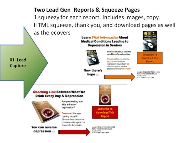 Lead Gen Squeeze Pages
