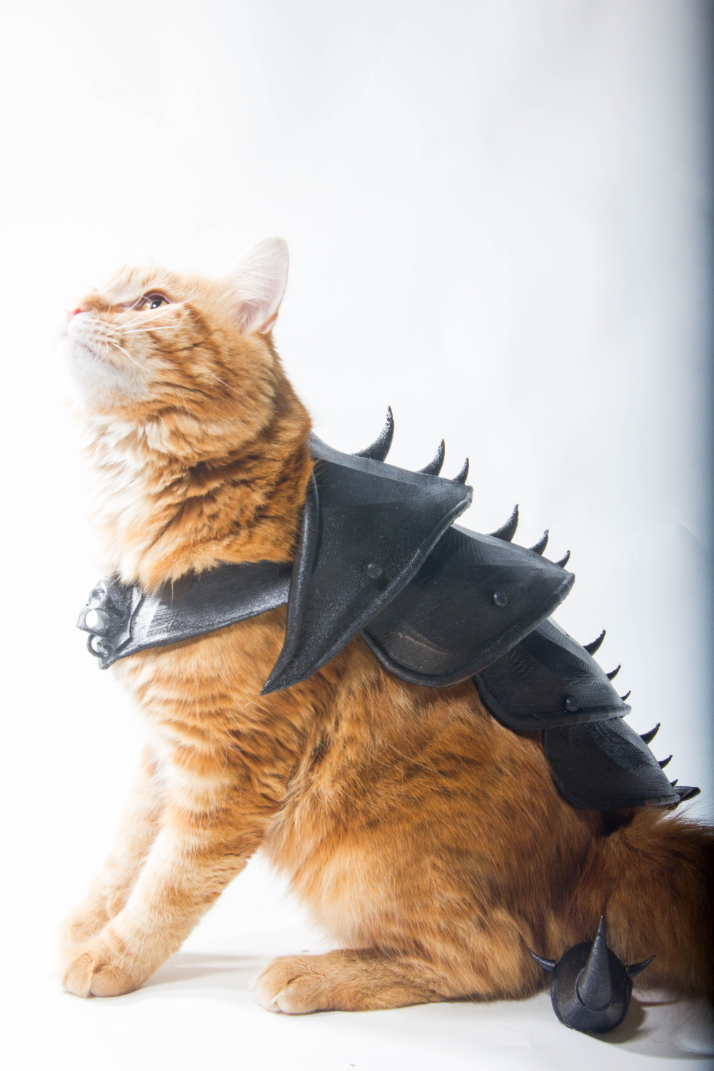 3d Printed Cat Armor By Print That Thing Pinshape In 2020 Cat Armor Cats Tabby Cat Names