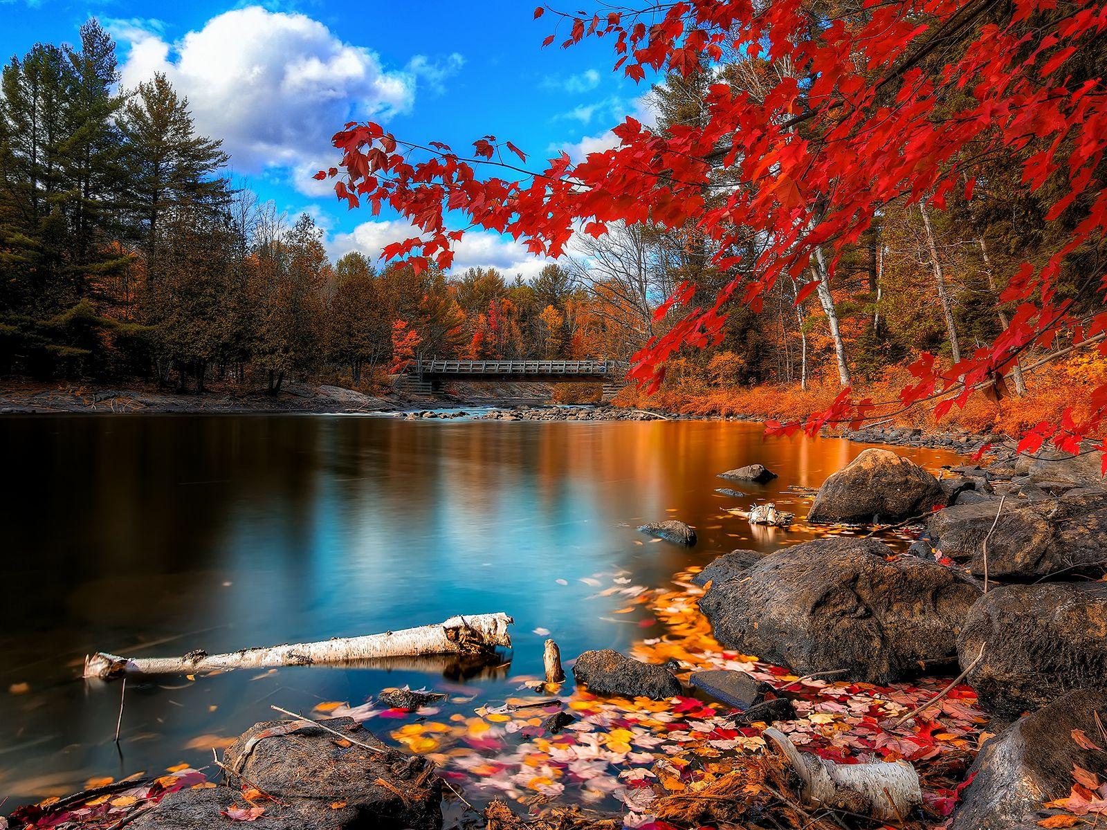 Oxtongue Rapids - Algonquin Provincial Park, Ontario, Canada
