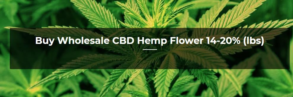 Buy Wholesale CBD Hemp Flower 14-20% (lbs) Wholesale - IHF