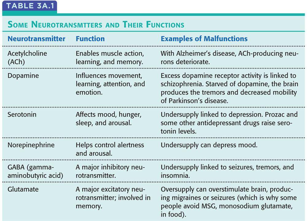 Schizophrenia Definition Psychology >> neurotransmitters list - Google Search | Ap psychology review, Ap psychology, Psychology