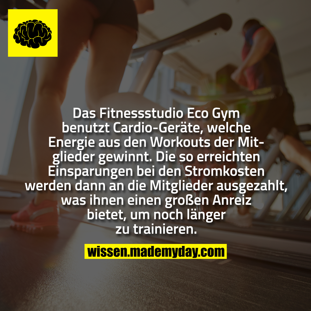 Photo of The Eco Gym gym uses cardio machines, which generate energy from the workout …