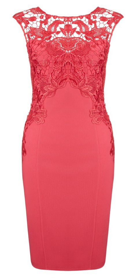 Pencil Red Lace Impress FashionistaTo DressFrustrated XnOk08wP