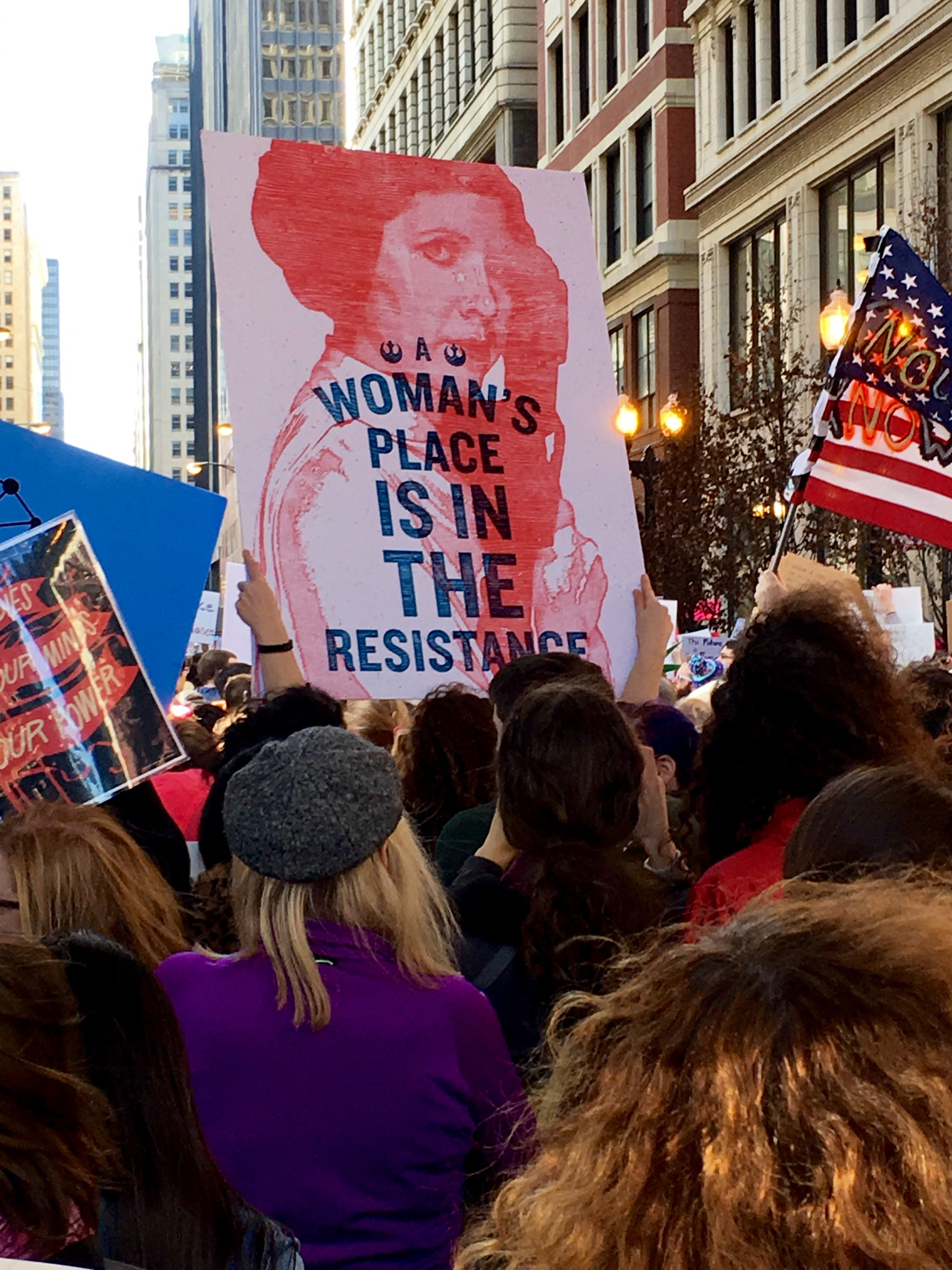 Pin By Julie Africk On Women S March On Chicago 2017 Womens March Fun Women
