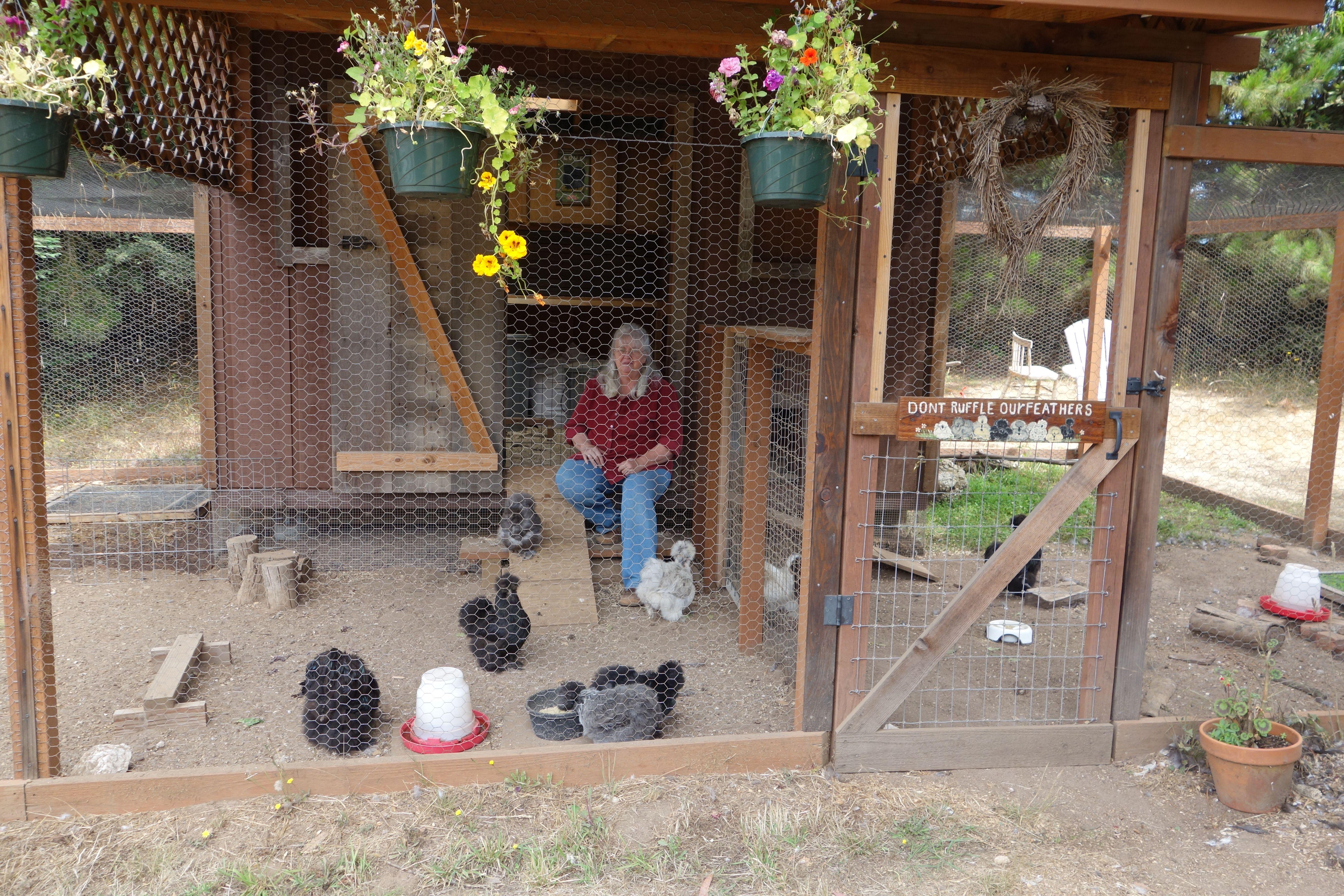 The Silkie Coop Serama Chicken Coops