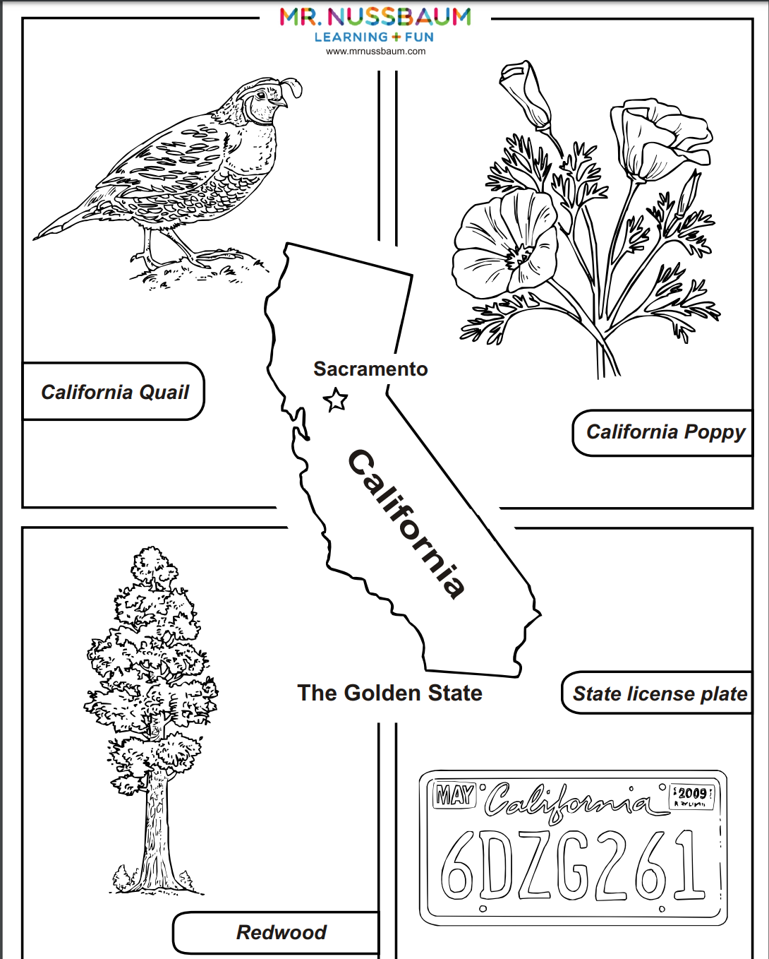 This Awesome Coloring Activities Allows Students To Design California S State Bird Flower Tree And License P State Symbols California Facts Color Activities
