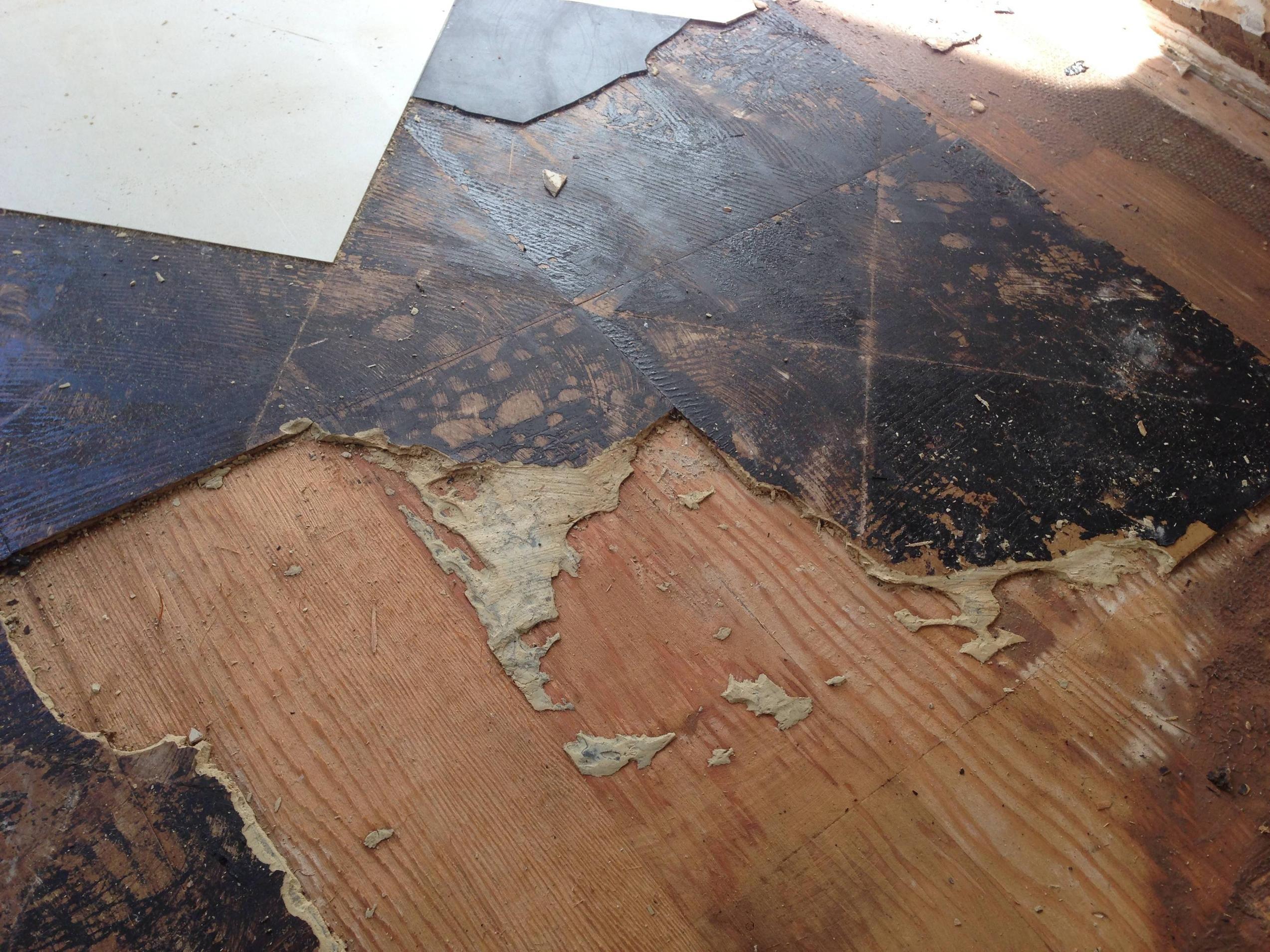 23++ Asbestos on floor
