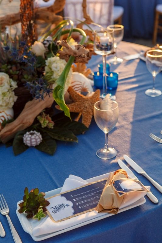 Seaside inspired tablescape parties and tablescapes pinterest seaside inspired tablescape junglespirit Gallery
