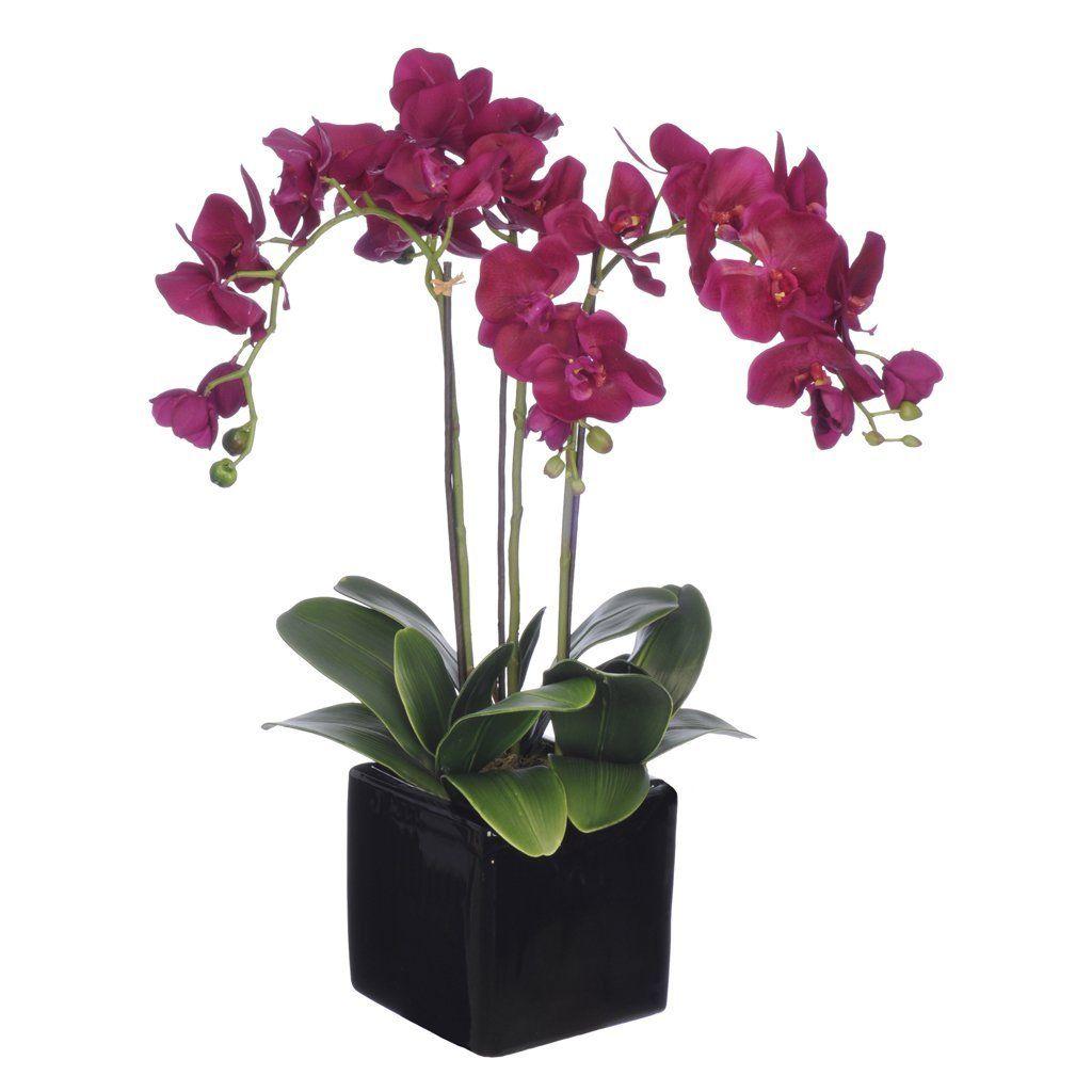 House Of Silk Flowers Artificial Dark Purple Triple Stem