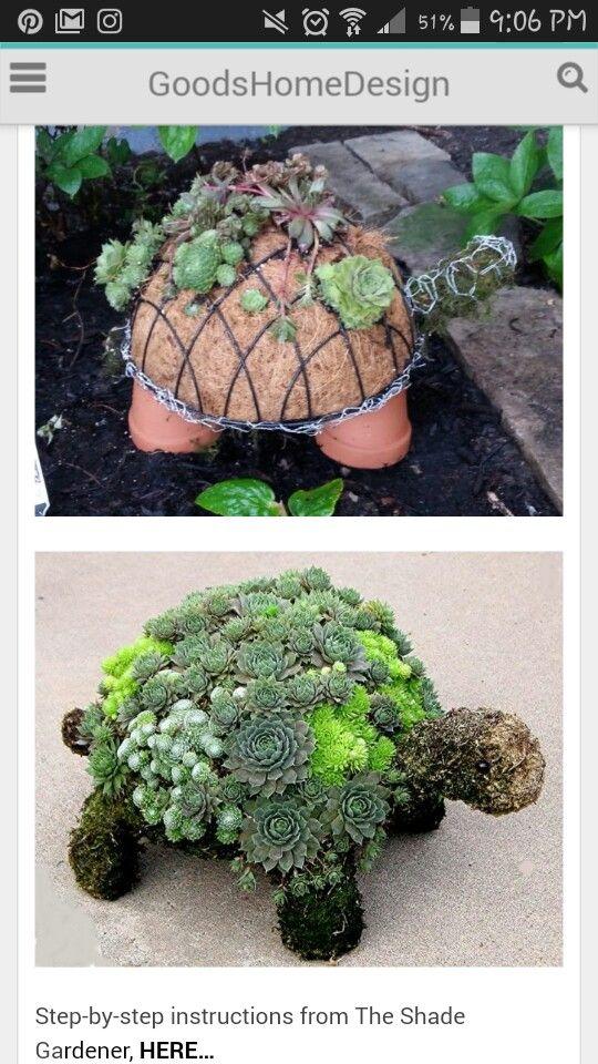 Http Www Goodshomedesign Com How To Make A Succulent Turtle Plants Succulents Diy Succulents Garden