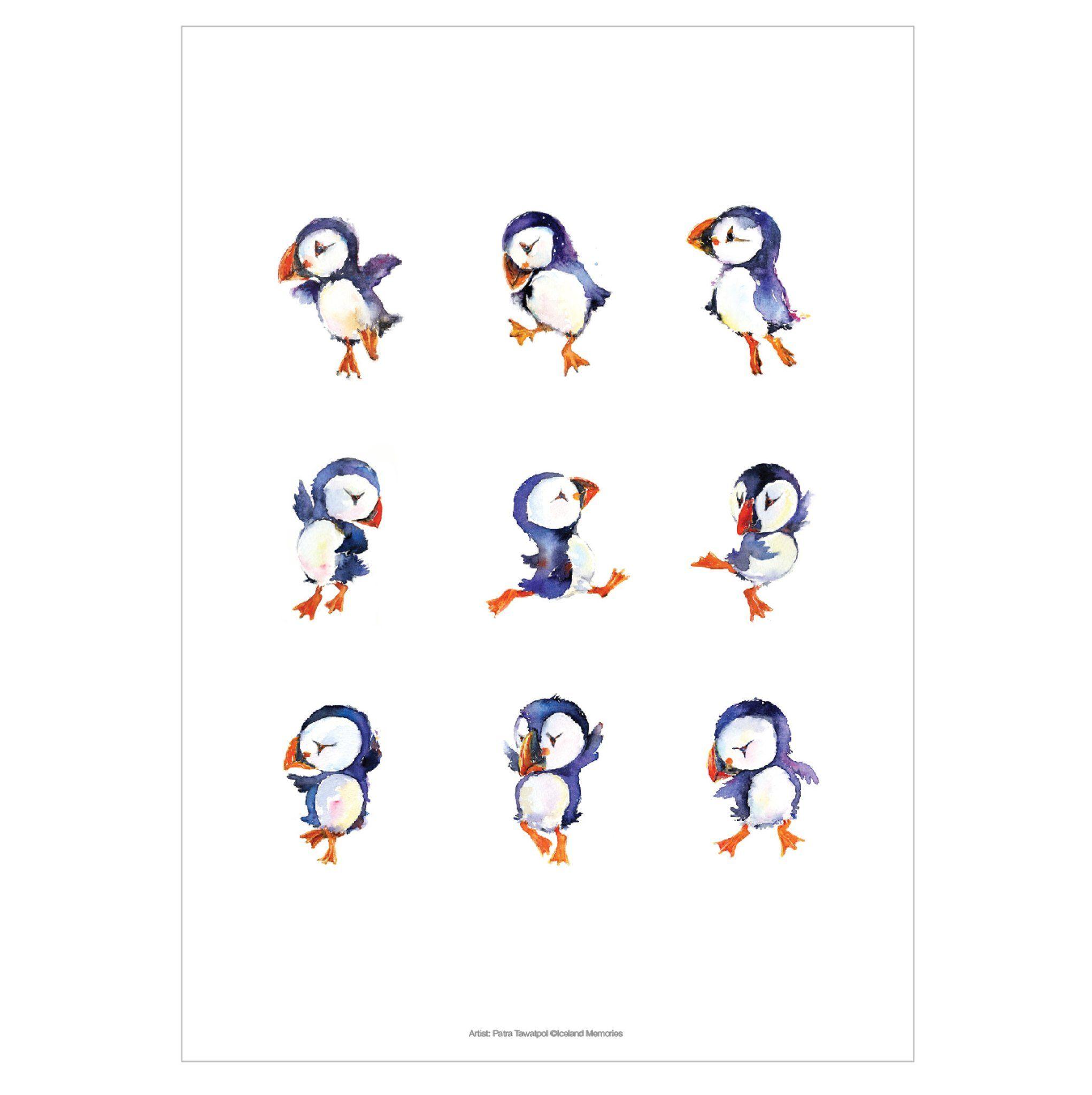Puffin Dance A4 Zeichnen Zeichnungen Tierbilder