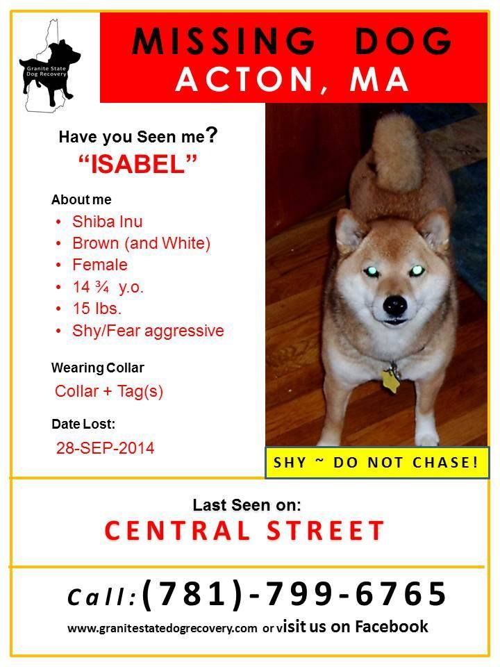 2014 Missing Dogs Of Ma Granite State Dog Recovery Facebook Losing A Dog Shiba Inu Shiba