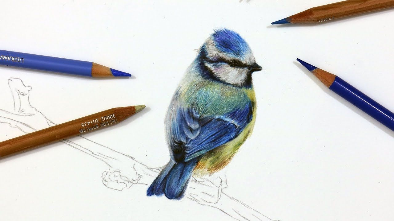 Pin On Color Pencil Art How To Use Color Pencils To Make Beautiful Art