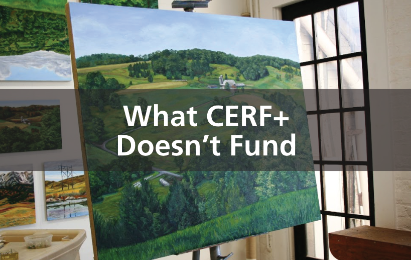 Craft Emergency Relief Fund CERF+ in 2020 Emergency