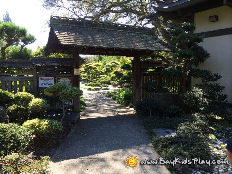 Hayward Japanese Gardens A Beautiful Garden Existed In The Midst