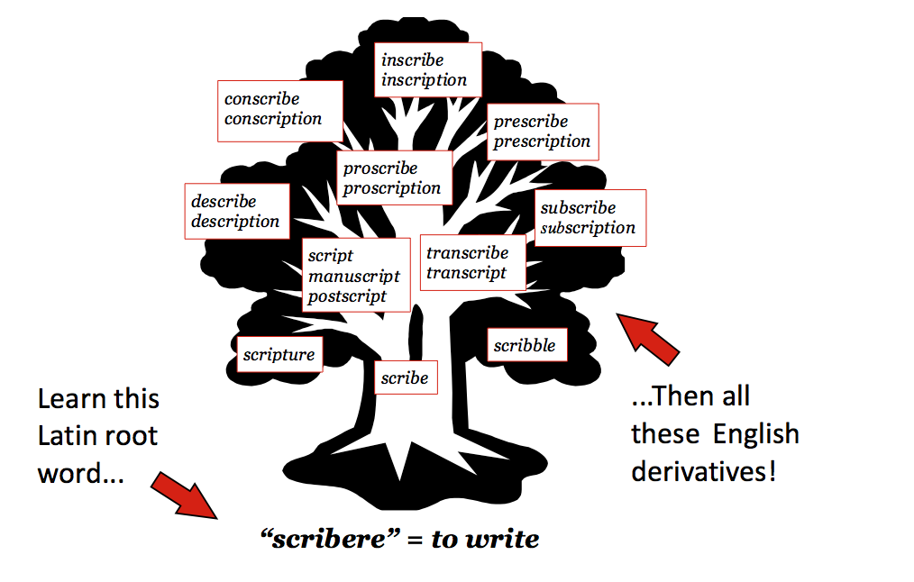 To Increase English Vocabulary English Vocabulary Latin Words And