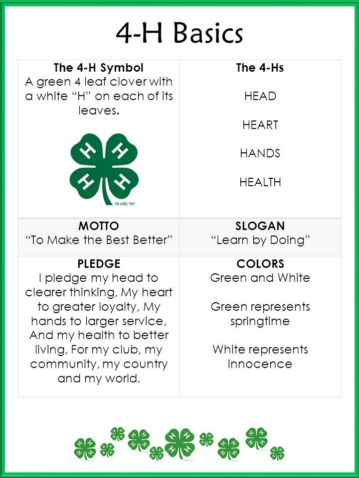 image about Printable 4 H Clover called 4-h Pledge And Motto Similar Search phrases Guidelines - 4-h