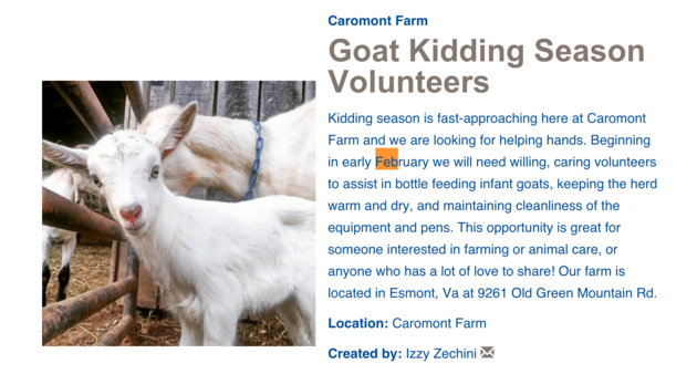 Farm Seeks Volunteers To Cuddle Goats, And The Internet Comes To The Rescue