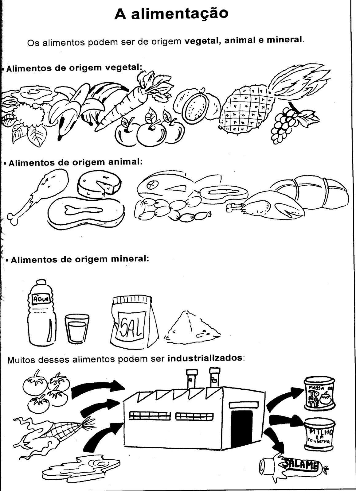 Ciencias Atividades Sobre Alimentacao Saudavel Atividades De