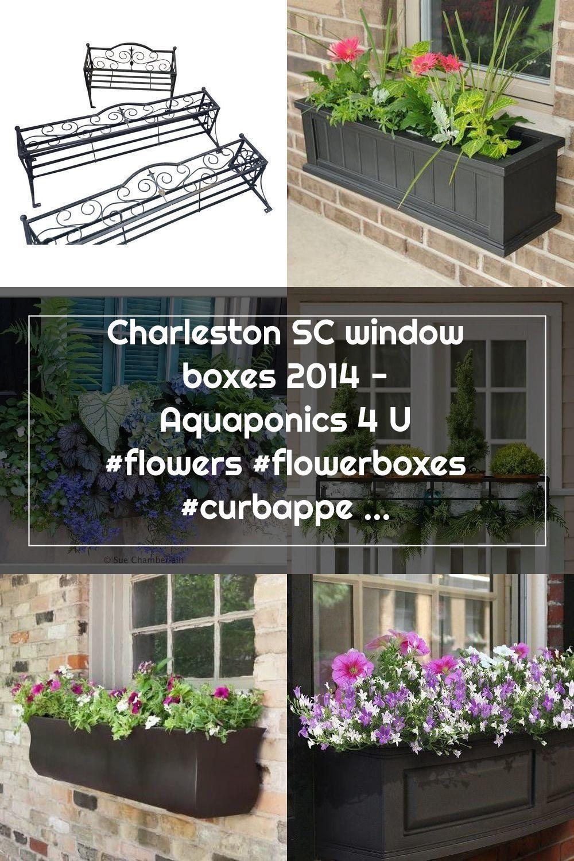 Charleston SC window boxes 2014 - Aquaponics 4 U #flowers #flowerboxes #curbappeal #windowboxes