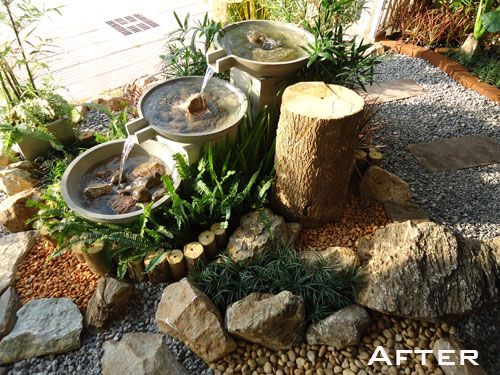 Low maintenance plant garden design and businesses for Low maintenance herb garden