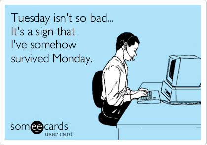 Free and Funny Workplace Ecard: Anyone who works or has worked in a call center, now knows how stupid people can be. Create and send your own custom Workplace ecard. Tuesday Humor, Tuesday Quotes, Monday Jokes, Call Center Humor, Pomes, Office Humor, Work Memes, Work Funnies, Stupid People