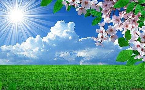 Happy Lodge Beautiful Nature Spring Spring Desktop Wallpaper Spring Wallpaper