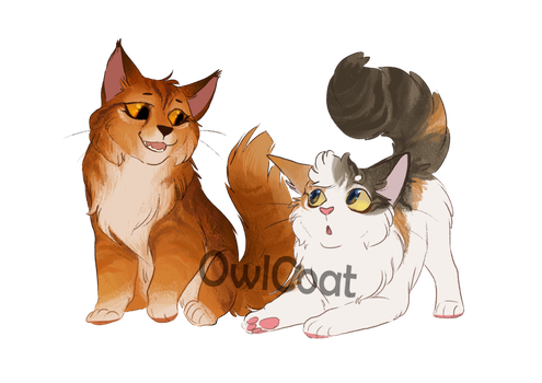 Warrior Cat Kit Adoptables Closed By Owlcoat Persy Kot