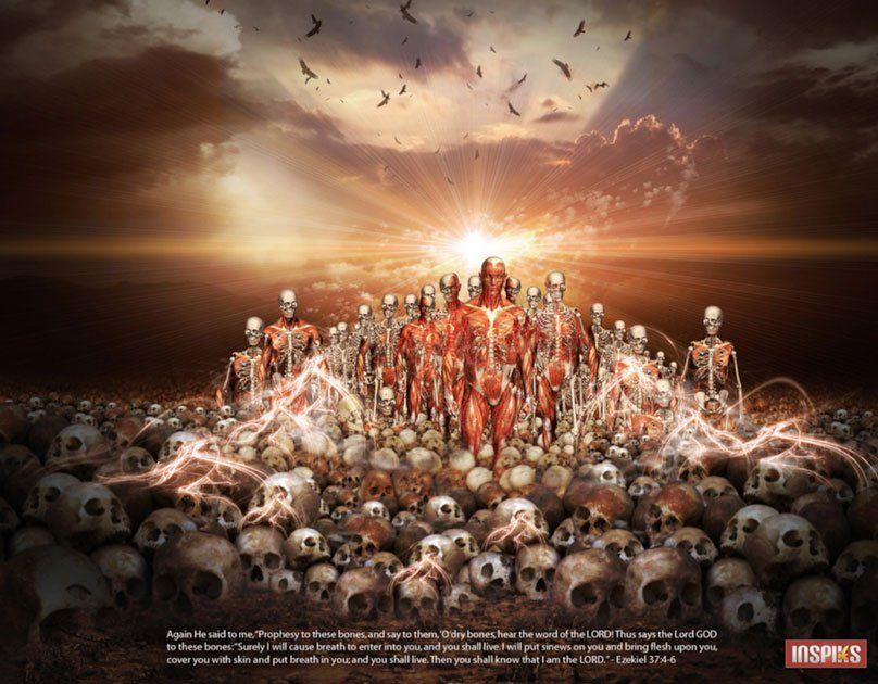 Resurrecting the Ancient Israelites From the Valley of Dry Bones   Valley of dry bones, Ancient israelites, Dry  bones