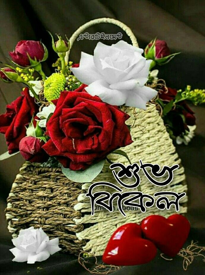 Pin by monoranjansardar on শুভ বিকাল Flower wallpaper