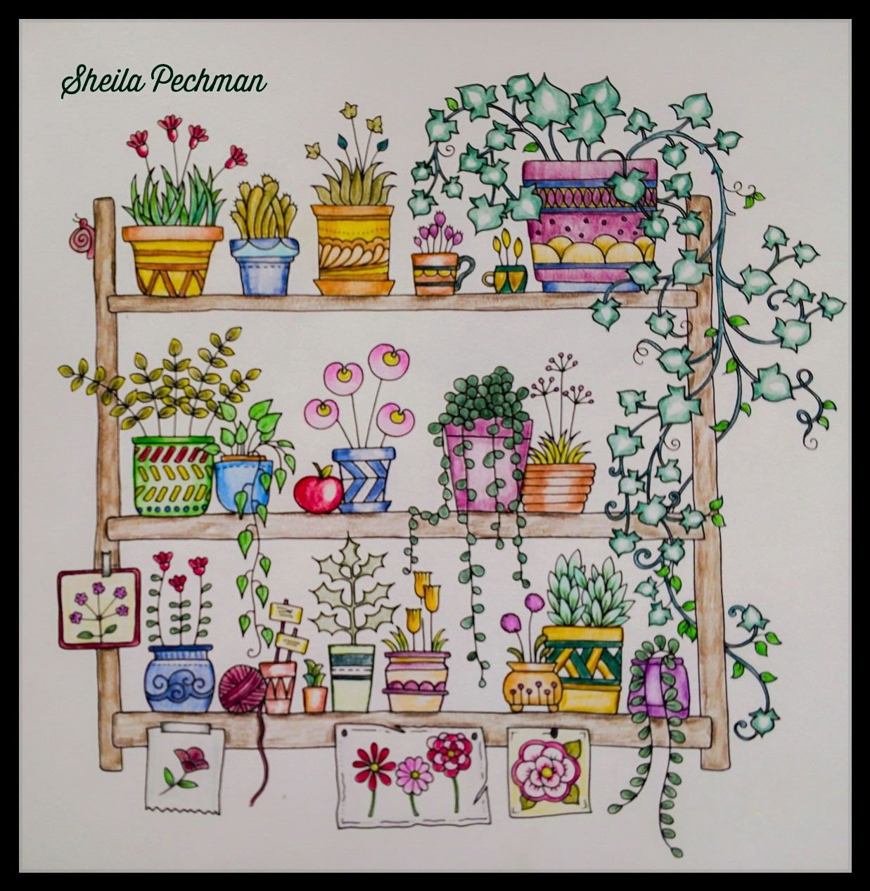 - World Of Flowers Johanna Basford Artist November 4, 2018 Johanna