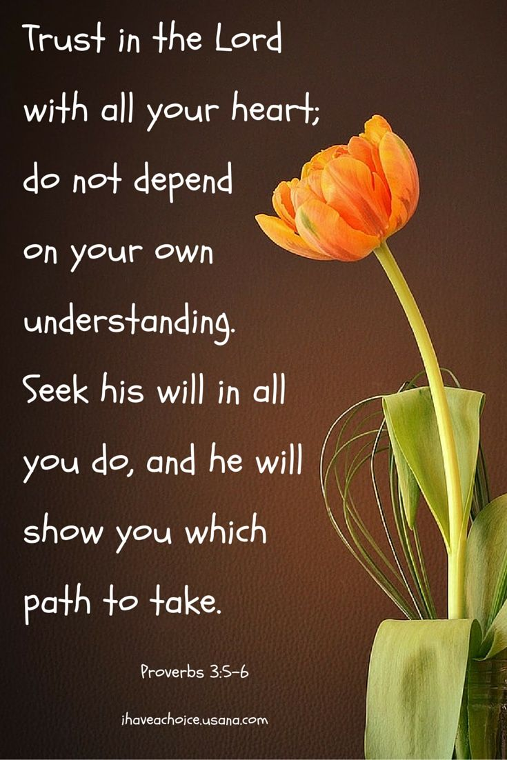 Trust In The Lord With All Your Heart Proverbs 3 5 6 Words Of