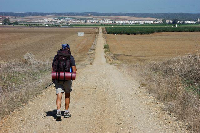 Pin En Camino De Santiago Vía De La Plata