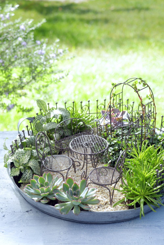 Diy mini garden spulletjes voor je mini tuintje mini garden pinterest mini garten - Zimmerpflanzen hangend ...