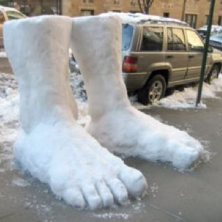 2 Feet Of Snow Seattle Snow And Snowflakes Pinterest