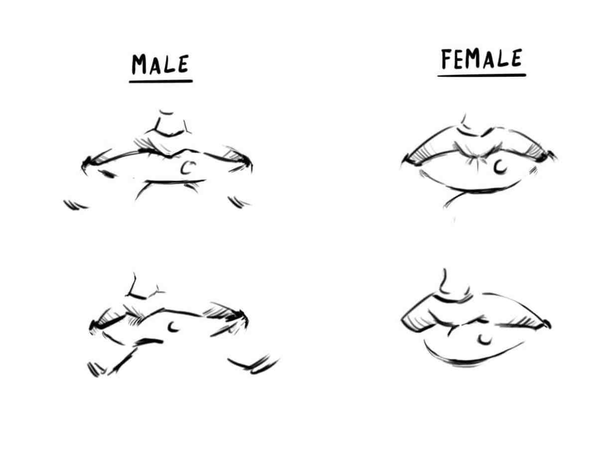 How To Draw A Face Drawing The Male And Female Head Front And 3 4 Female Face Drawing Anime Face Drawing Male Face Drawing