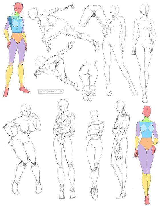 Female Anatomy 8 By Precia T On Deviantart Female Anatomy