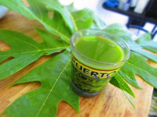 como preparar la hoja de papaya para adelgazar