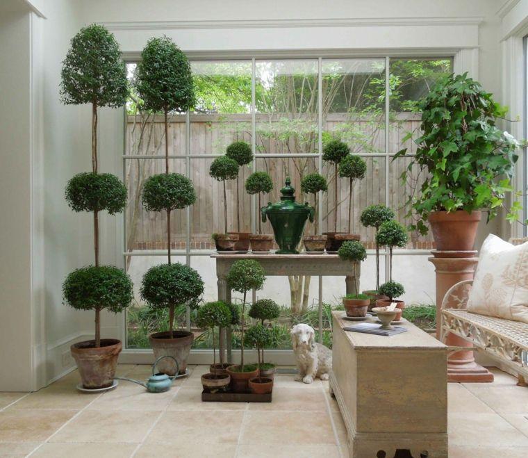 Déco De Véranda : Plantes Vertes Du0027intérieur