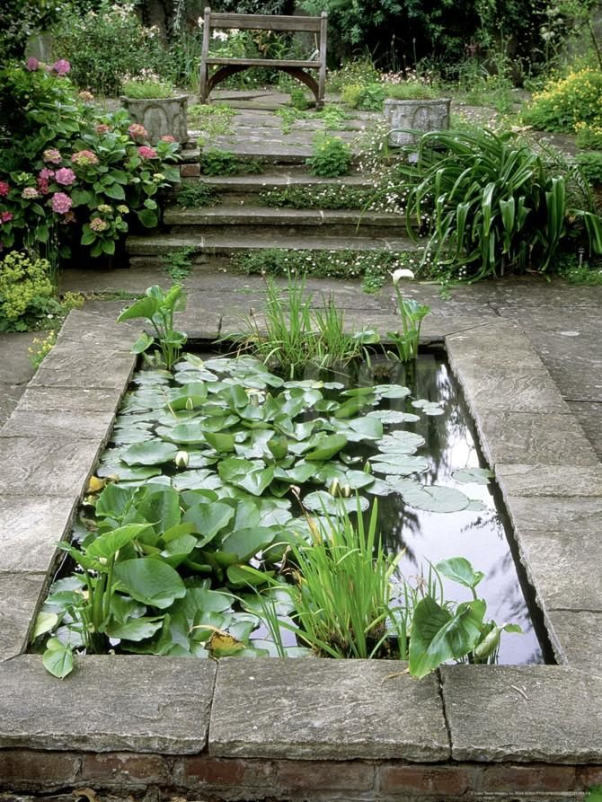 Small Formal Pond With Aquatic Planting Photographic Print By Mark Bolton At Art Co Uk Water Features In The Garden Small Backyard Landscaping Ponds Backyard