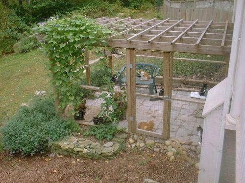 cat enclosures catio pinterest katzen katzen haus and katzen drau en. Black Bedroom Furniture Sets. Home Design Ideas