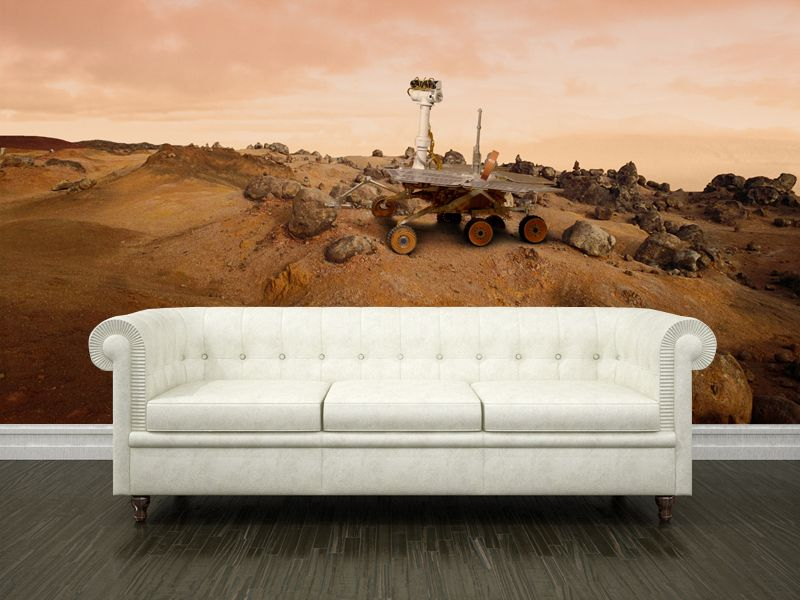 Eazywallz  - On the surface of Mars Wall Mural, $121.18 (http://www.eazywallz.com/on-the-surface-of-mars-wall-mural/)